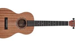 Alvarez RU22B – test ukulele barytonowego