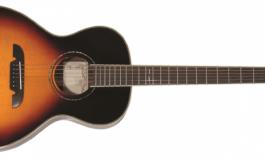 Gitara akustyczna Alvarez Blues 51