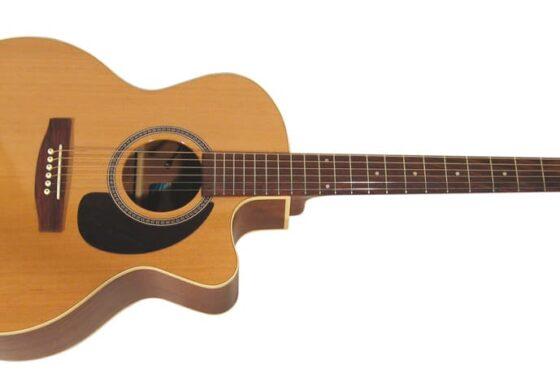 Seagull Performer Mini Jumbo – test gitary akustyczno-elektrycznej
