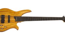Washburn CB15SP – test gitary basowej