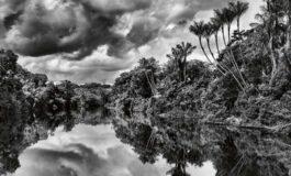 Jean-Michel Jarre zaprasza do Amazonii…