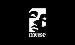 Nowa firma Muse Group rośnie w siłę
